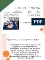 Aportes de la Terapia Ocupacional en un contexto educacional