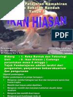IKAN HIASAN2