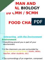 Food Chain (1)
