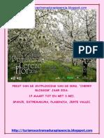 Cerezo en Flor 2016-Neerlandes