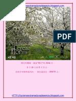 Cerezo en Flor 2016-Chino-2