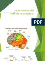 Envejecimiento Del Sistema Neurológico 2 [Aut