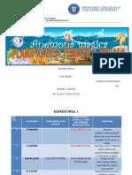 Planificarea Anuala 2015 - 2016