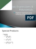 Algebraic Expressions & Polynomials