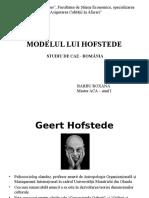 Modelul Lui Hofstede, Studiu de Caz
