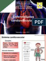 dieto cardiovascular.ppt