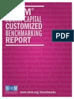 Human Capital Report Sample