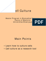 Kultur Sel 2015