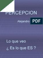 Percepcion (Lo Que Veo)