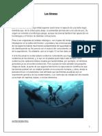 Las Sirenas Informe Final