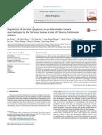 Regulation of intrinsic apoptosis in cycloheximide