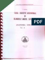 Anatomia Omului Tubul Digestiv Abdominal Si Glandele Anexe Viorel Ranga Vol 3