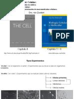 II-BvZ Metodos en Biol Celular 2016