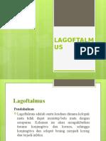2-LAGOFTALMUS