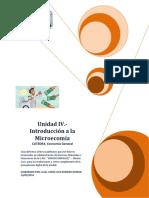 Guia Unidad 4 - Microeconomia