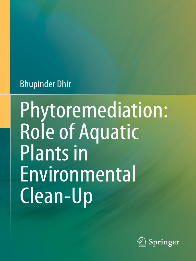 Phytoremediation Acuatic Plants | Wastewater | Sewage Treatment