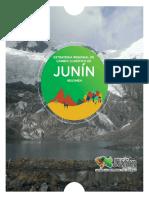 ERCC_Junin_8dicOK (1).pdf