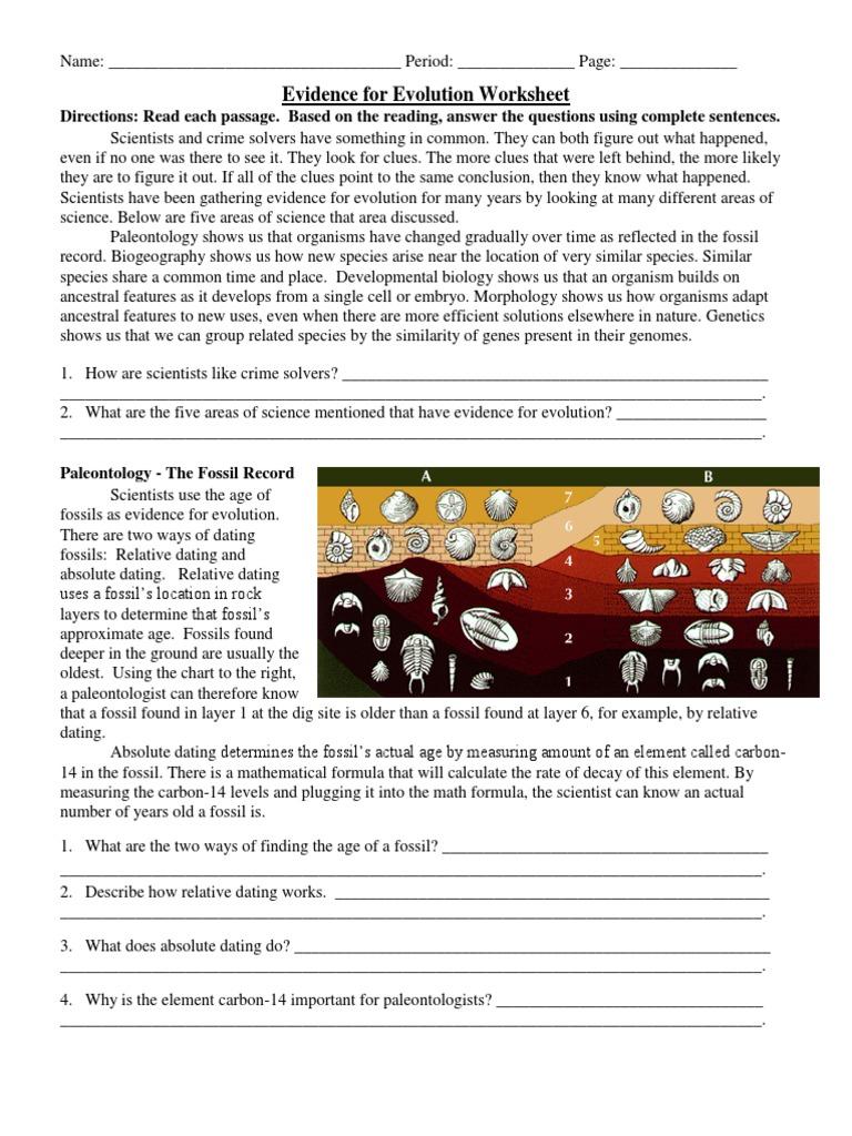 Evidence For Evolution Worksheet Fossil Paleontology