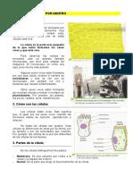 1._Los_seres_vivos_por_dentro.pdf