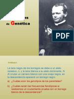 18 Problemas de Genética (Resueltos)