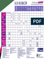 Calendario Vacunación Argentina