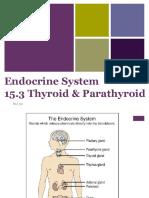 5-15 3 thyroid parathyroid