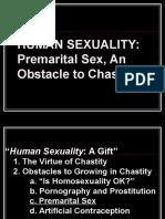 4 Premarital Sex 1