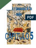 Tomo2cap5 Genesis Taxonomia