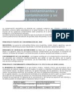 Fuentes de Contaminacion Del Aire