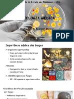 4 - Micologia Médica - Parcial