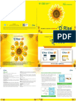 D-rise Diabetes Booklet Issue - 9 Artwork