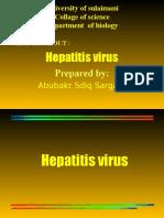 hepatitisvirus