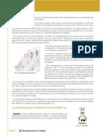 libro_mecanica 21.pdf