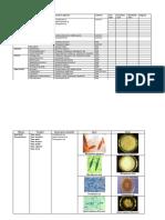 Mikologi.pdf