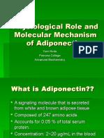 Ando Adiponectin Presentation