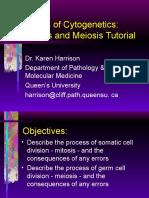 path410-2005meiosisandmitosis