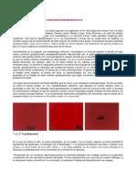 012 POSTFOT1_Plagio y Apropiacion