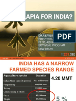 8 India-Why Tilapia.pdf