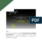Proyecto Del Colegio Maldonado