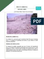 IMPACTO MBIENTAL CCY.doc