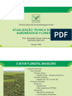 Setor Florestal e Suas Commodities