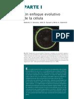 Celula_1.pdf