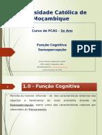 Psicopatologia da Função Cognitiva