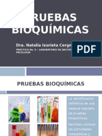 laboratoriono-5-pruebasbioqumicas-110529225758-phpapp02.pptx