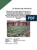 Expediente Técnico Del Proyecto Mallquibamba Final