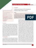Adenocarcinoma of Ceruminous Glands
