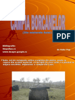 Campia Borcanelor - Din Enigmele Asiei