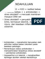 Solo Antioksidan