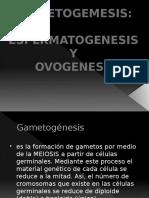 presentacin3-130923210502-phpapp01.pptx