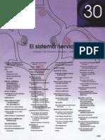 Capitulo 30 Sistema Nervioso Central 6ta Edicion